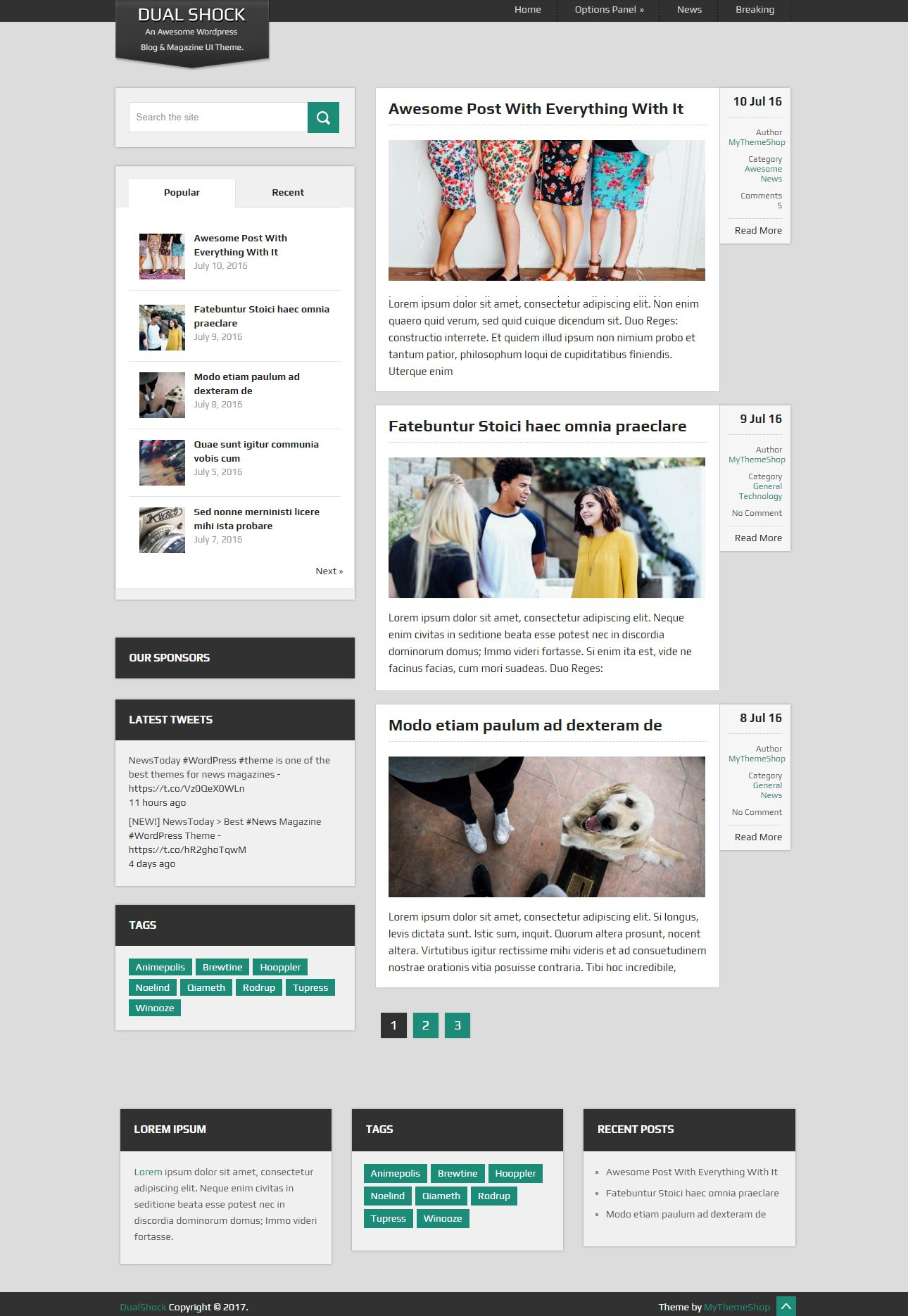 dual shock free wordpress blog themes