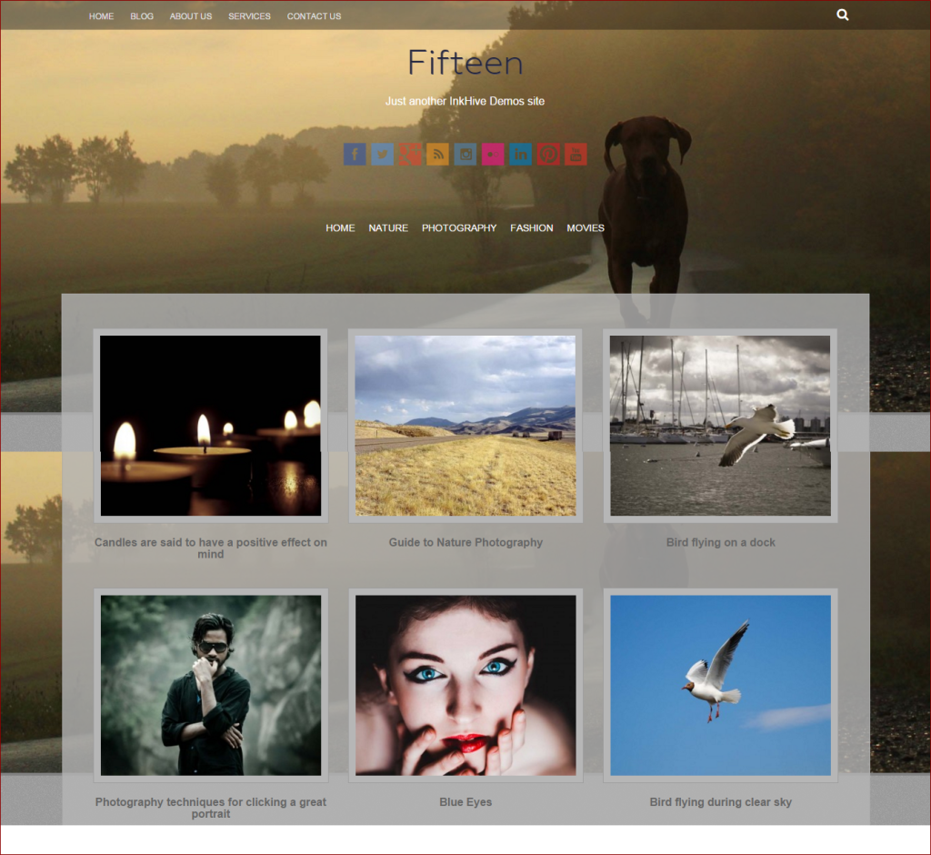 Fifteen wordpress template - wordpress templates for photographers | Thakur Blogger