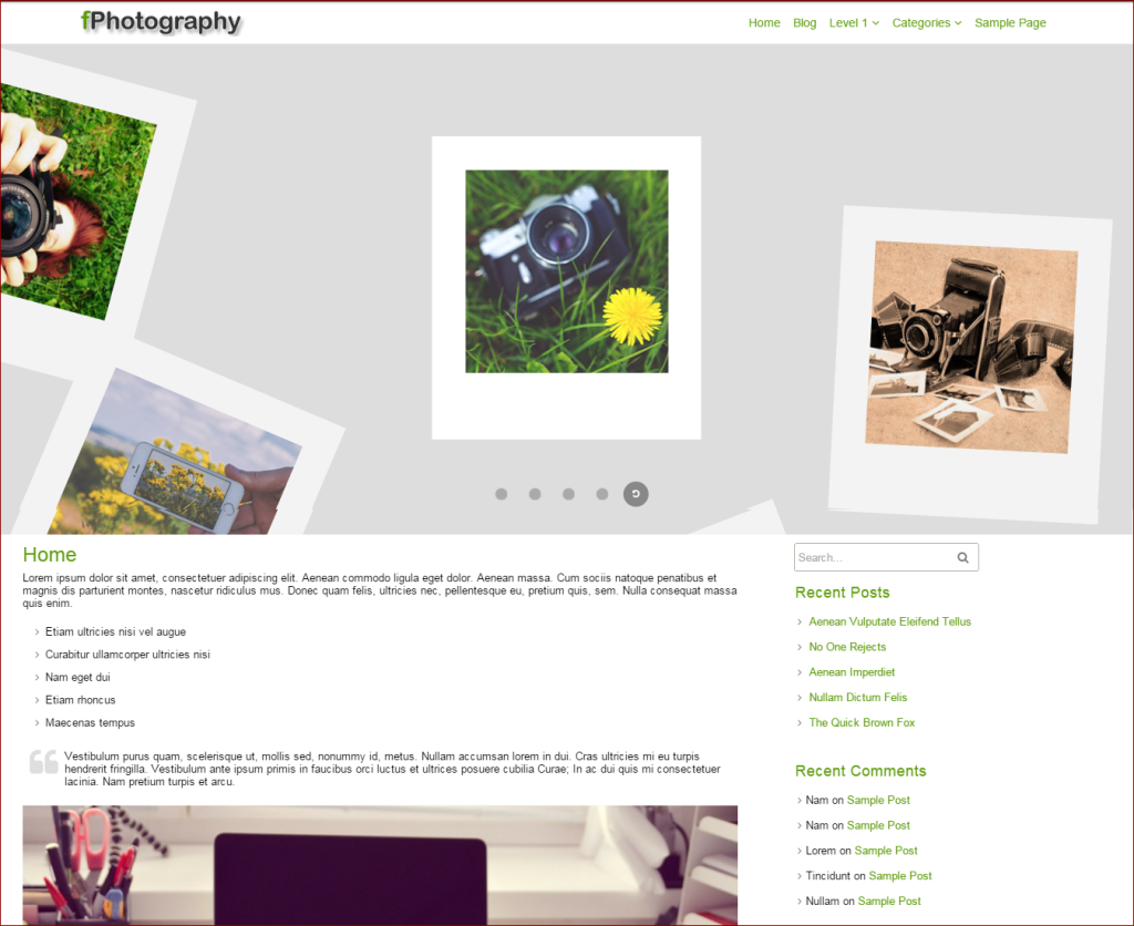 Fphotography theme - wordpress templates for photographers | Thakur Blogger