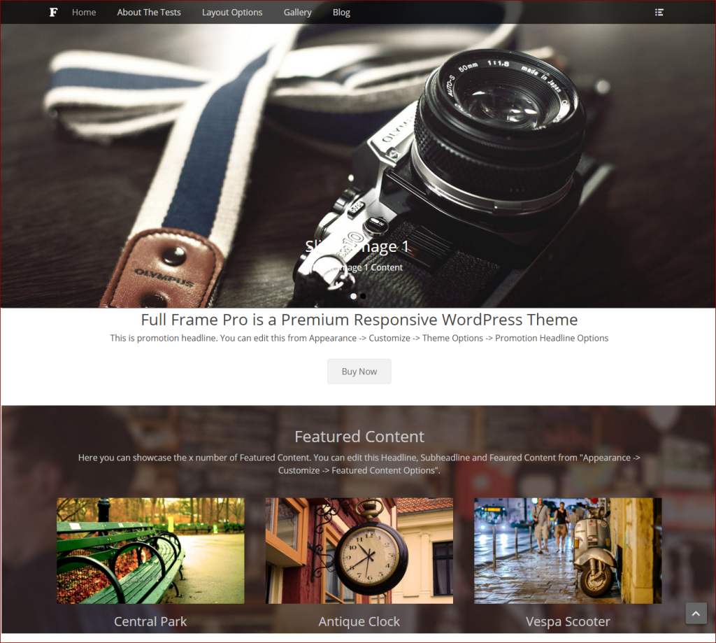 Full frame theme - wordpress templates for photographers | Thakur Blogger