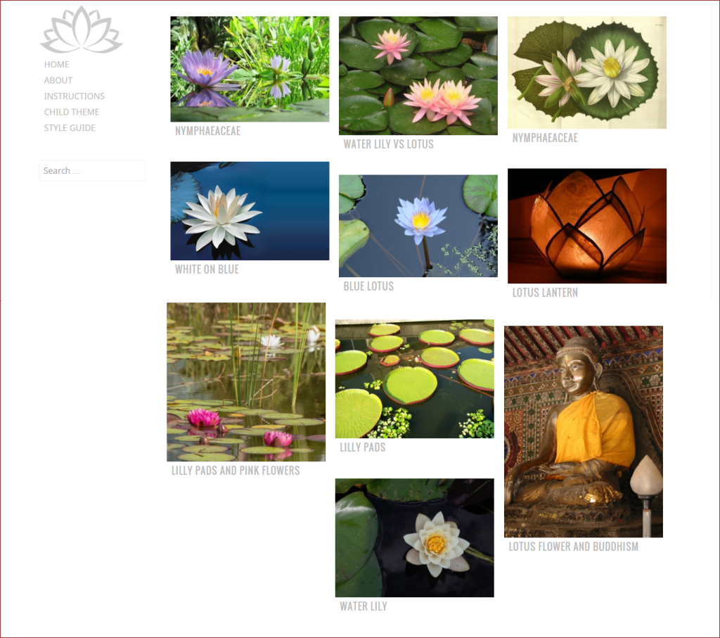 Water Lilly theme - wordpress templates for photographers | Thakur Blogger