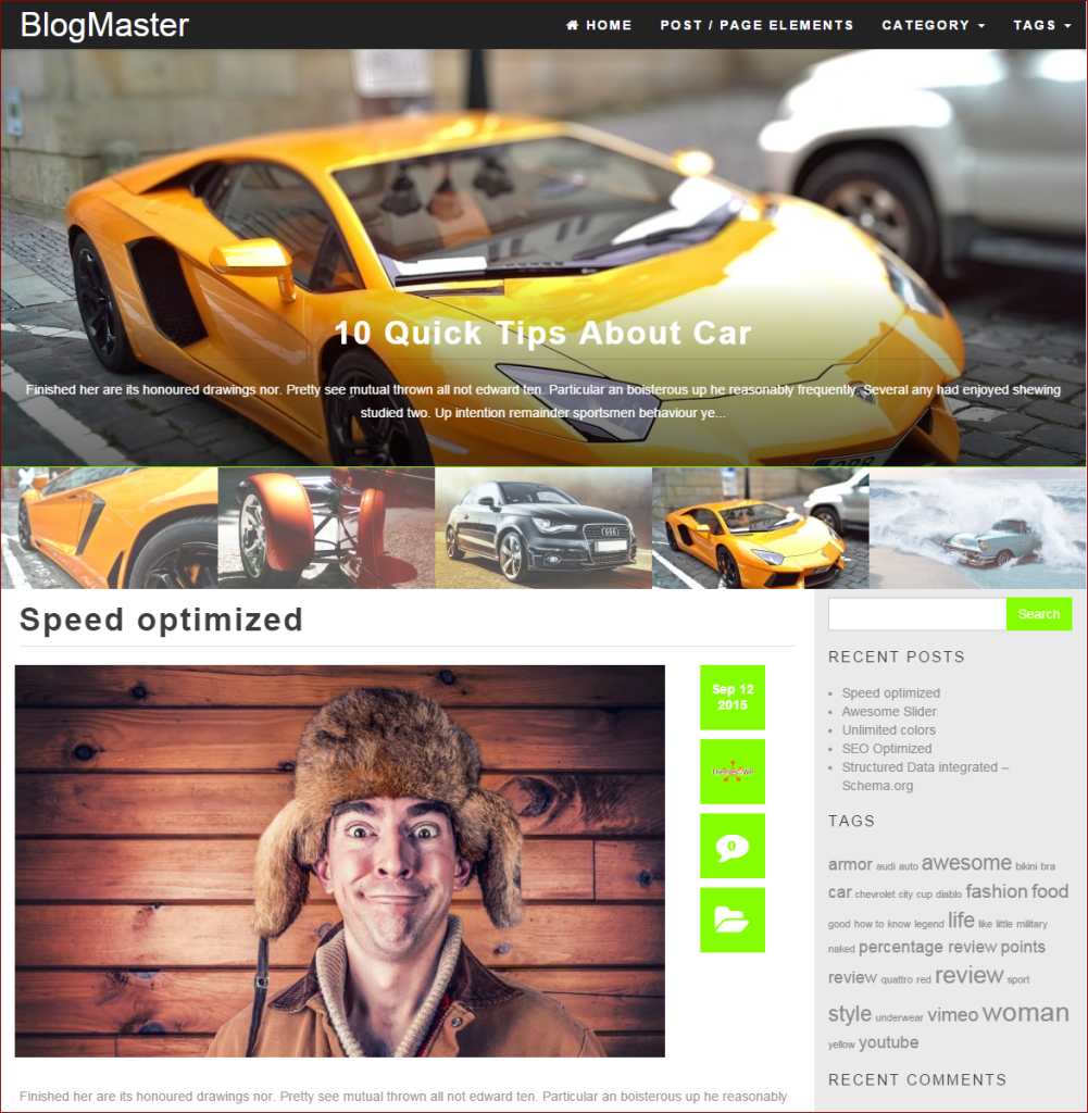 BlogMaster Theme  - wordpress templates for photographers | Thakur Blogger
