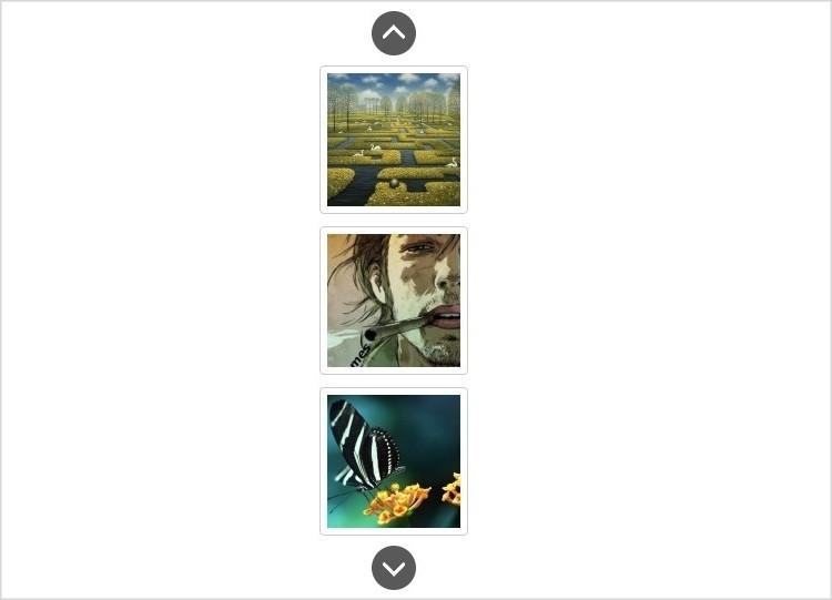 WordPress Vertical Image Slider Plugin