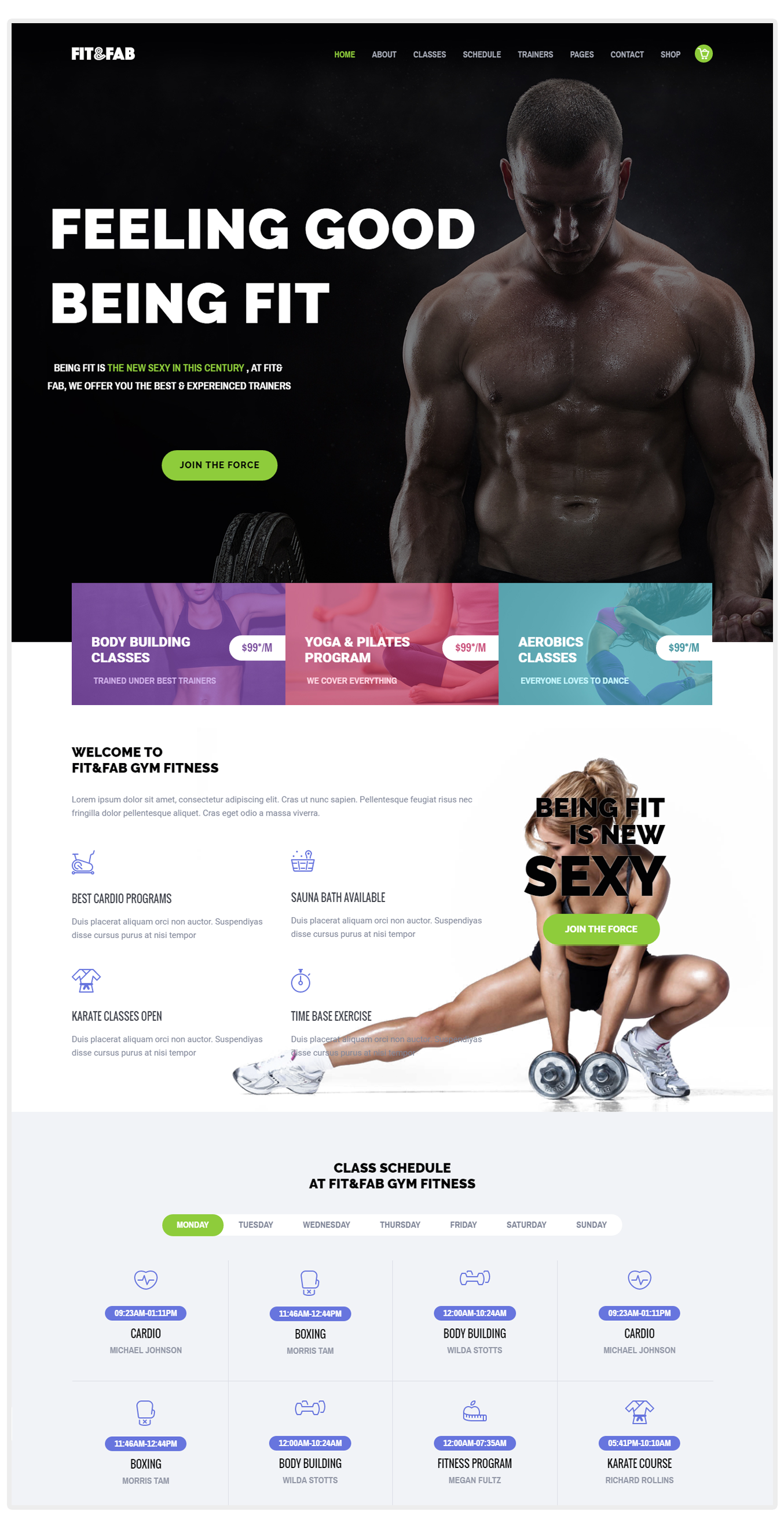 Fit & Fab – Aerobic, Gym and Fitness WordPress Theme