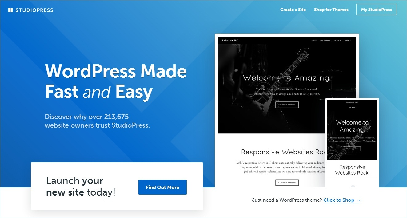 studiopress Affiliate WordPress theme and Plugin